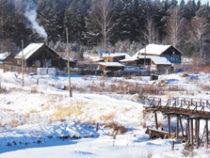 Лесной посёлок  и его обитатели