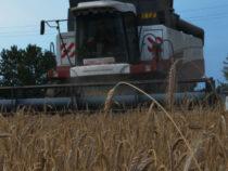 «Деевский» старт уборки урожая