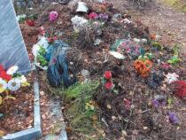 Мусор, захват земли и другие проблемы алапаевских кладбищ