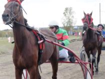 Конные бега в Невьянском