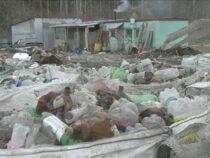 В Алапаевске продолжает дымить мусорный полигон