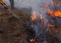 В Свердловской области продолжается ликвидация природных пожаров